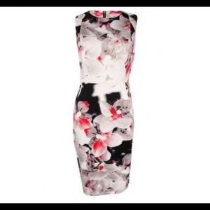 Calvin Klein Scuba Sheath Dress Orchid Print Sz 6